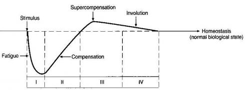 Supercompensation Curve